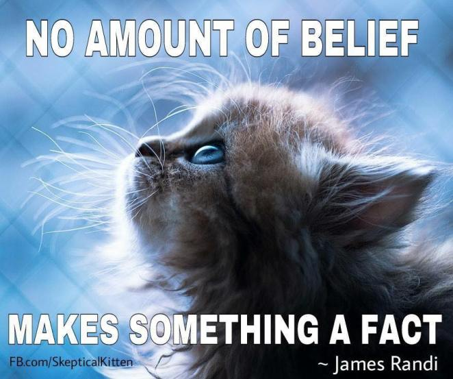 no amount of belief makes something a fact.jpg